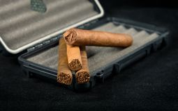 Cigars on top of a black travel humidor. Rich smelling and textu stock images