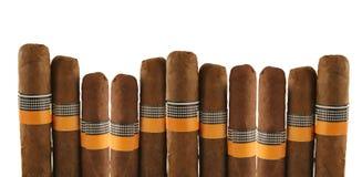 Cigars on white. Isolated cigars on white background Stock Photos
