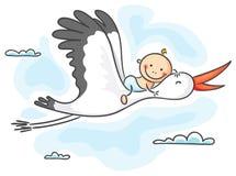 Cigüeña que lleva a un bebé Fotos de archivo libres de regalías