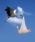 Cigüeña y bebé Fotografía de archivo libre de regalías