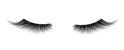 Cigli falsi neri Singolo elemento decorativo della mascara Fotografia Stock