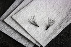 Cigli neri falsi sul cotone pulito fotografia stock