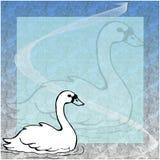 Cigno illustrazione vettoriale