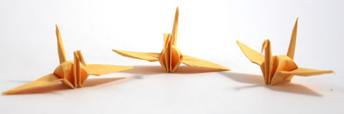 Cigno di origami Fotografia Stock