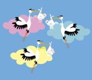 Cigogne 3 livrant un nouveau-né Photo libre de droits