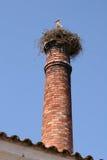 Cigogne sur l'emboîtement de pile de cheminée Photo stock