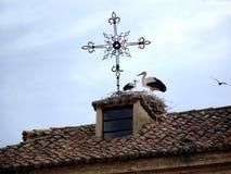 Cigognes sur le toit d'une maison rustique Images stock