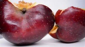 Ciie za jabłku z zły przegniłą sedno fermatą, wirować i zdjęcie wideo