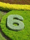 Cijfer-6 Royalty-vrije Stock Afbeelding