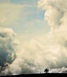 Cijfer die aan een boom op bergbovenkant naar boven gaan royalty-vrije stock afbeelding
