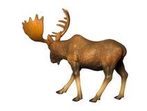 Cijfer van een Amerikaanse eland Stock Afbeelding