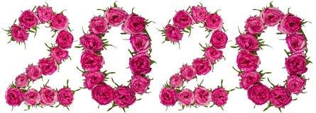 Cijfer 2020 van rode die bloemen van roos, op witte backgro worden geïsoleerd Royalty-vrije Stock Foto's