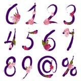 Cijfers en tekens met de lentebloemen Stock Afbeeldingen