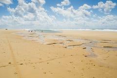Cijfers in het ondiepe water van de zandige kust van de Atlantische Oceaan Stock Foto's