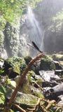 cikaracak waterfall Royalty Free Stock Images