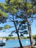 Mali Losinj, Cikat bay. Cikat bay is a famous tourist destination on  Croatian island of Mali Losinj, where you can enjoy yourself in the clear waters of the Stock Images