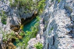 Cikola jar w Chorwacja, w górę zakończenia, jak widzieć od przez ferrata trasy nad Cikola rzeka Turystyka i przygoda w Chorwacja obrazy royalty free