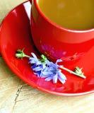 Cikoriadrink i röd kopp och blomma ombord Royaltyfri Fotografi