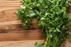 Cilantro. Fresh cilantro on cutting board with room to type stock photo