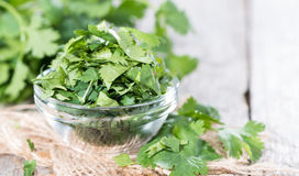 Cilantro Stock Photography