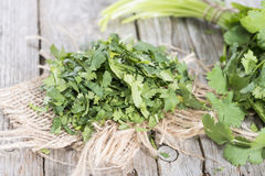 Cilantro. Fresh portion Cilantro as detailed close-up shot royalty free stock images