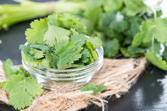 Cilantro. Fresh portion Cilantro as detailed close-up shot royalty free stock photo