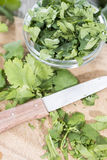 Cilantro Stock Photos