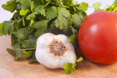 Cilantro, garlic, and a tomato. Royalty Free Stock Photo