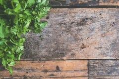 Cilantro, Green, Hardwood royalty free stock photography