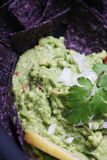 Cilantro in Guacamole royalty free stock photos