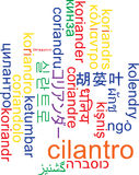 Cilantro multilanguage wordcloud background concept Royalty Free Stock Photography