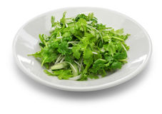 Cilantro salad Stock Photo