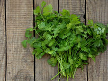 Cilantro on a wooden background. Bunch of cilantro on a wooden background stock image