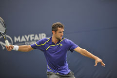 Cilic Rogers Cup 2012 (16) Royalty Free Stock Images