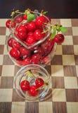 Ciliege acide mature di recente selezionate Fotografie Stock Libere da Diritti