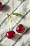 Ciliege acide organiche rosse crude immagine stock