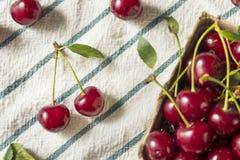 Ciliege acide organiche rosse crude immagini stock