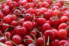 Ciliege Ciliegia Merce nel carrello organica delle ciliege su un mercato dei farmer's Fondo rosso della ciliegia Struttura fres Immagine Stock Libera da Diritti