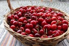 Ciliege Ciliegia Merce nel carrello organica delle ciliege su un mercato dei farmer's Fondo rosso della ciliegia Struttura fres Immagine Stock