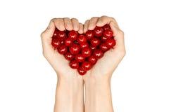 Ciliege in mani della donna che formano forma del cuore Fotografia Stock