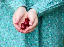 Ciliege mature fresche in mani della ragazza Immagini Stock Libere da Diritti