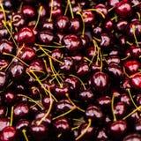 Ciliege mature fresche organiche su un mercato locale dell'agricoltore Cherr rosso Fotografia Stock Libera da Diritti
