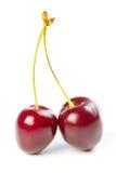 Ciliege mature rosse Fotografia Stock Libera da Diritti