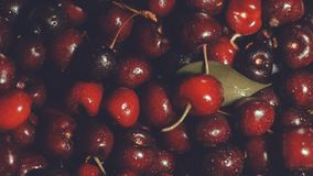 Ciliege red delicious come fondo immagine stock libera da diritti