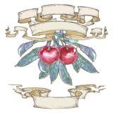 Ciliege rosse con le foglie in nastri Immagine Stock