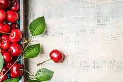 Ciliege rosse dolci con le foglie su fondo d'annata di legno bianco, vista superiore Frutti di estate Fotografie Stock Libere da Diritti