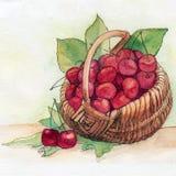 Ciliegia, canestro di frutta, prima colazione fresca, pasto, sano illustrazione vettoriale