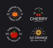 Ciliegia d'annata, zucca, pomodoro e logo arancio, emblemi, etichette e distintivi ed altri oggetti marcanti a caldo Fotografia Stock Libera da Diritti