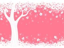 Ciliegia del fiore illustrazione di stock