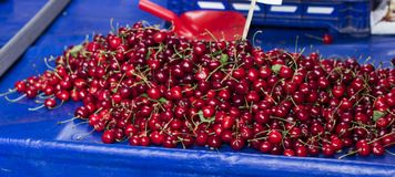 ciliegia fresca al bazar turco tradizionale Immagine Stock Libera da Diritti